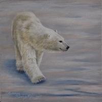 Polar-Stroll-6-x-6-inch-acyrlic