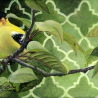 Goldfinch – 5x7 acrylic