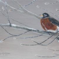 The-Early-Bird-7-x-9.75-inch-acrylic