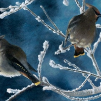 frosty-morn-7x15-acrylic