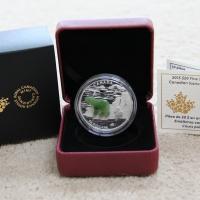 2015 $20 Silver Coin